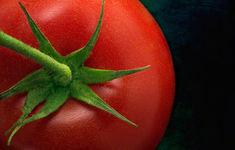 Close up of tomato and stem on textured background.