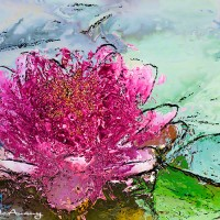 lotus abstract art print