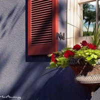 art print surreal scene in windows of building with red shutters