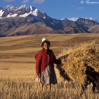 Andes mountains and hay farmland
