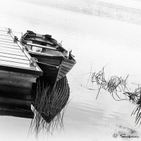rowboat tied to dock art photo print