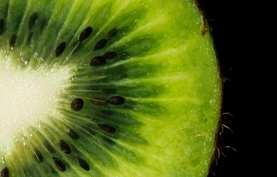Kiwi macro fine art photograph