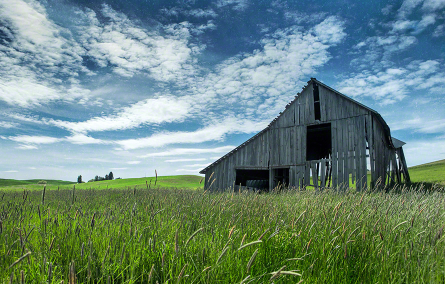 weathered barn in field art photograph