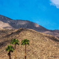 Desert landscape photo art print