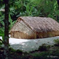 hut in Tikopia, Soloman Island