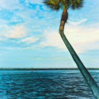 coastal nature landscape print