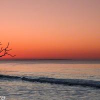 panaramic sunrise over Botany Bay