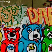 bear graffiti art photograph