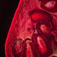 pomegranate on black modern art print