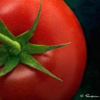 tomato on textured background art print