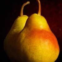 pears on textured background art print