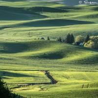 farmhouse in rolling fields landscape