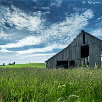 weathered barn in field landscape photograph