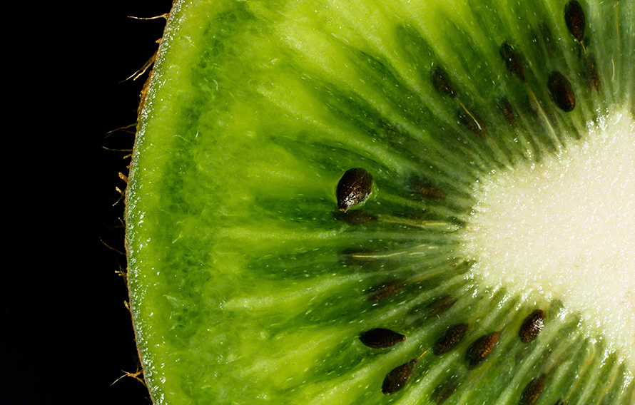 macro art print of Kiwi on black