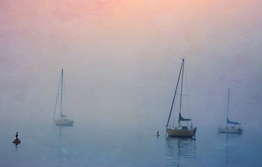 Sailboats harboured in fog