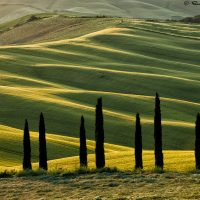 nature landscape photograph of Tuscany