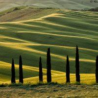nature landscape photograph of Tuscany